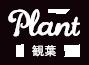 Plant 観葉