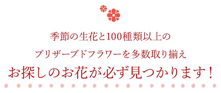 厳選したこだわりの生花と100種類以上のプリザーブドフラワー