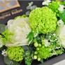 FuruRe_ホワイトグリーン