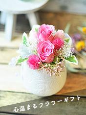花明り(ピンク)
