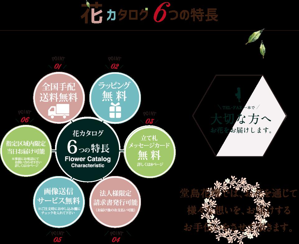 花カタログ6つの特長