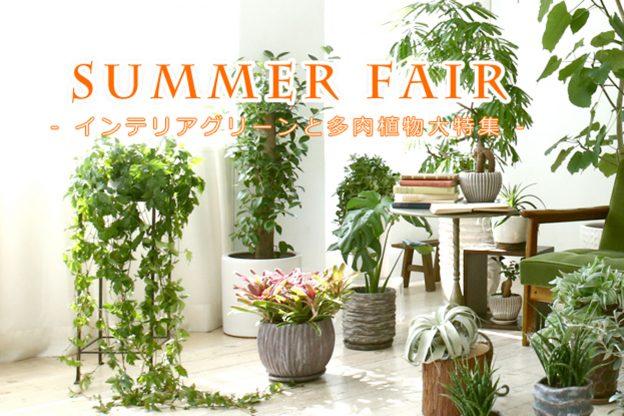 summer_02 - コピー