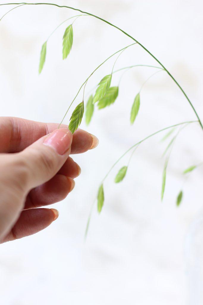 光に透けて美しいグリーンスケール(小判草)の花穂
